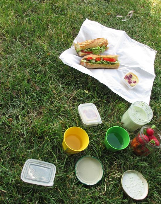 sandwich_poulet_estragon 4