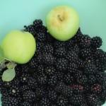 Mûres sauvages et pommes vertes