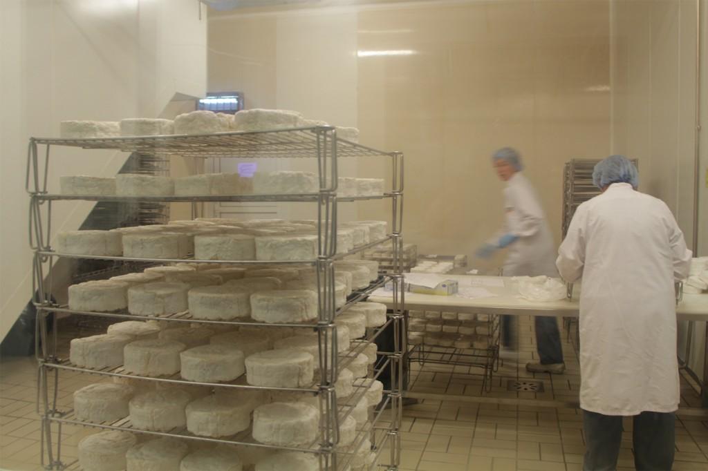 Déballage des camemberts affinés