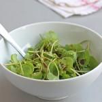 vinaigrette à la pâte miso, sauce pour salade au miso