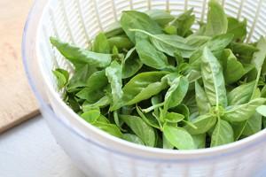 Essorer les herbes aromatiques dans une essoreuse à salade
