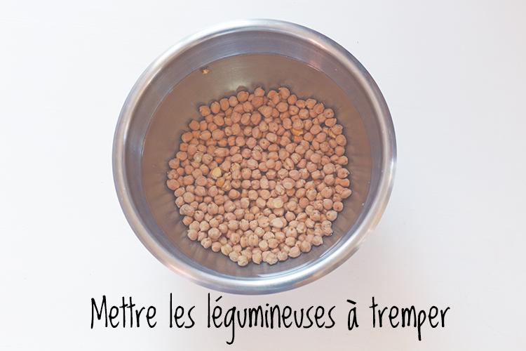 légumineuses_a_tremper2