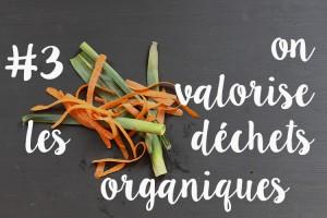 Raison3_valorisation_déchets_organiques