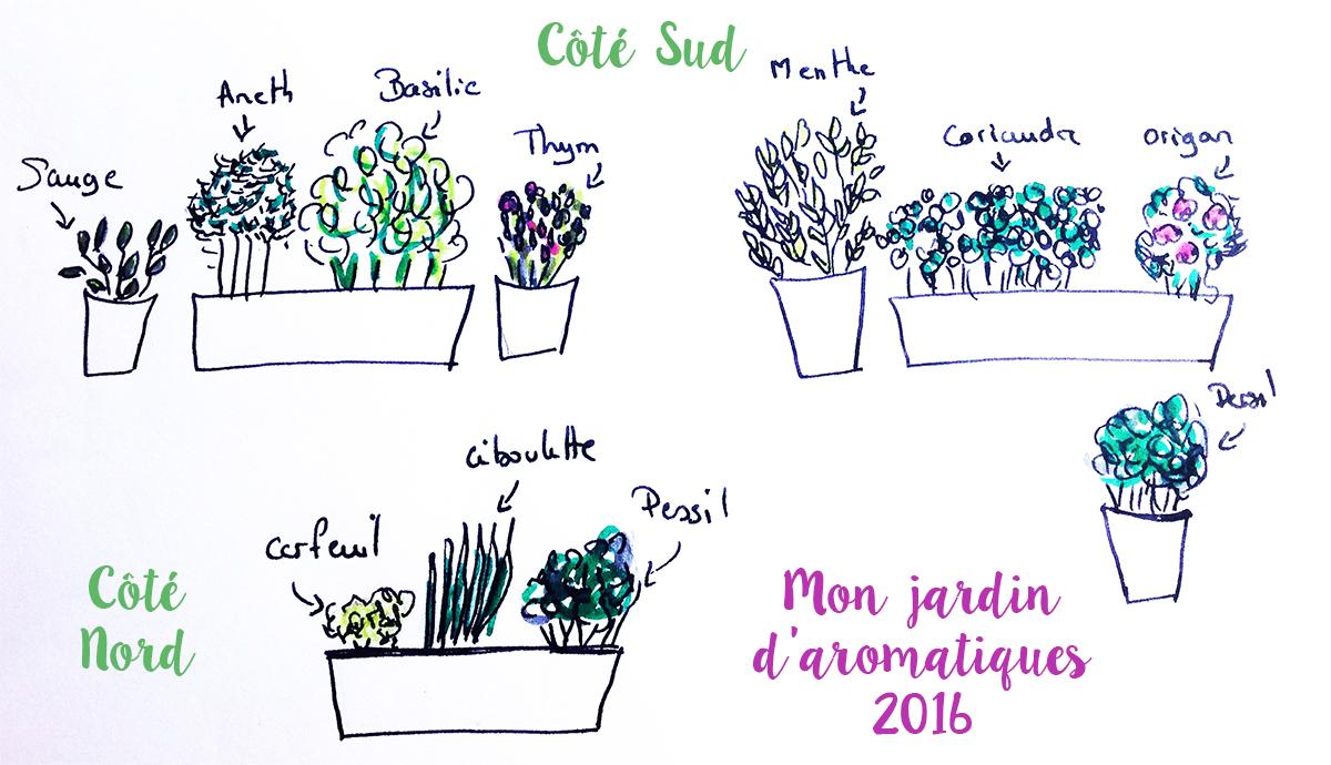 Planter Herbes Aromatiques Jardiniere faire le plan de son jardin d'herbes aromatiques sur balcon