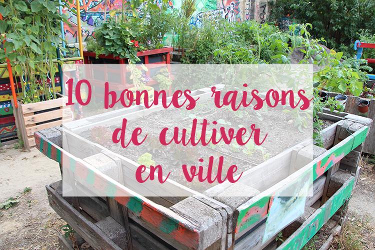 10 bonnes raisons de cultiver en ville