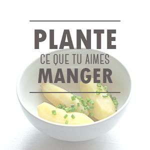 Plante ce que tu aimes manger