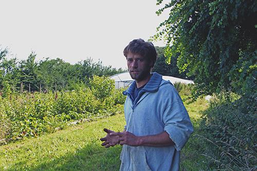 jardin-maraicher-permaculture-guillaume