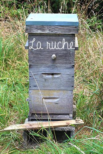 jardin-maraicher-permaculture-ruche
