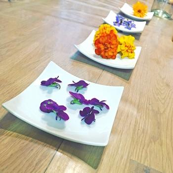 atelier-fleurs-comestibles-5