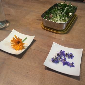 atelier-fleurs-comestibles-6