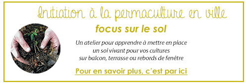 atelier_sol_permaculture