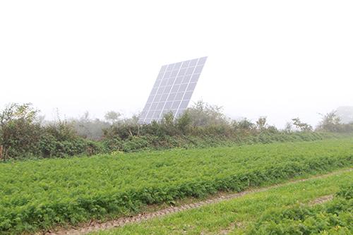 Des haies pour entretenir la biodiversité et des panneaux solaires couvrent 20 % des besoins de l'entreprise en électricité