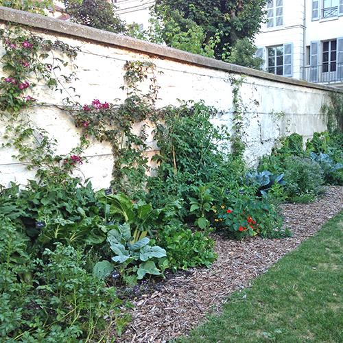 potager-urbain-musee-montmartre-paris-ateliers-jardinage-legumes-herbes-apprendre-à-cultiver-en-ville-enfants-adultes-nature-en-ville-paris-18-plein-air-été (1)