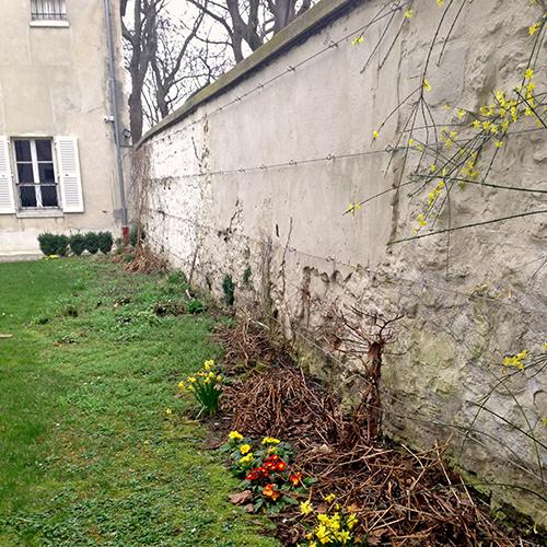 potager-urbain-musee-montmartre-paris-ateliers-jardinage-legumes-herbes-apprendre-à-cultiver-en-ville-enfants-adultes-nature-en-ville-paris-18-plein-air-installation (2)