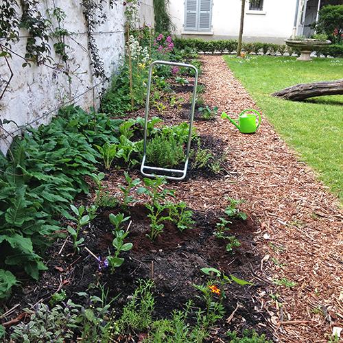 potager-urbain-musee-montmartre-paris-ateliers-jardinage-legumes-herbes-apprendre-à-cultiver-en-ville-enfants-adultes-nature-en-ville-paris-18-plein-air-printemps (3)