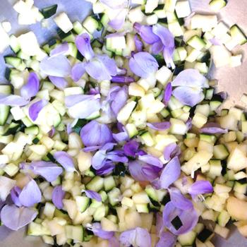ateliers-decouverte-degustation-gastronomie-ecologie-fleurs-comestibles-5