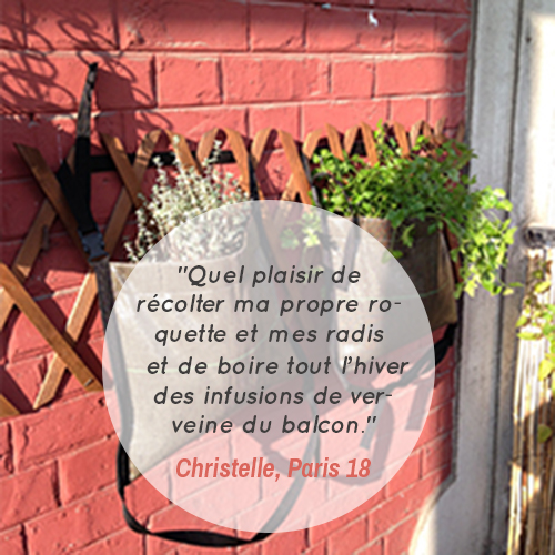 temoignage-client-ateliers-potager-balcon-permaculture-jardinage-en-ville-temoignage-christelle