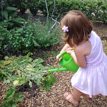ateliers-aventures-nature-scolaire-potager-graines-jardinage-plantes-vegetaux-decouverte-fille