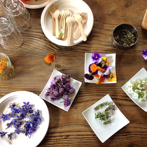 Idées cadeau pour citadins en manque de vert - ateliers jardinage et fleurs comestibles