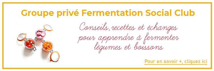 Bannière à cliquer groupe privé découverte de la fermentation, légumes et boissons
