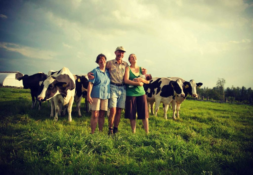 site rencontre vache
