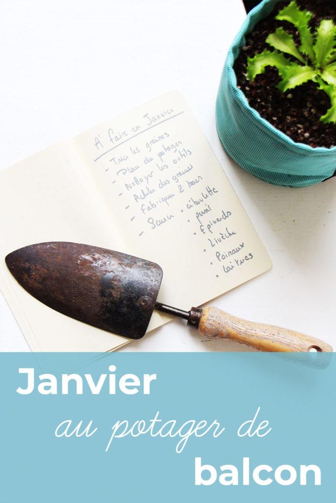 Cahier, transplantoir et pot avec de un salade frisée