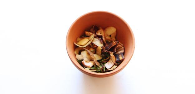 lasagne de permaculture dans un pot